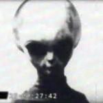 Gris Z Raticuli 150x150 - Razas Extraterrestres Negativas