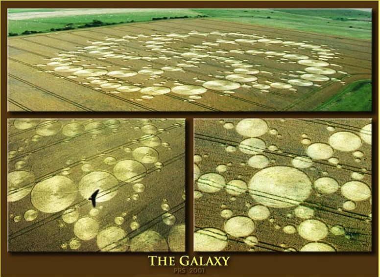 Círculo de cultivo The Galaxy