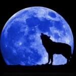 """El fenómeno de la """"Luna Azul"""""""