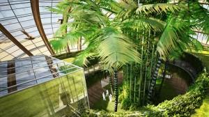 """Biodiversidad en las Arcas e1348680299610 300x168 - Ark Hotel, la nueva versión del """"Arca de Noe"""""""