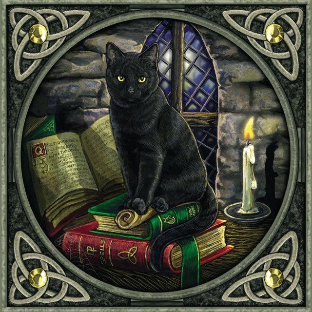 Los gatos negros y la brujeria Gatos Negros, ¿mascotas del diablo?