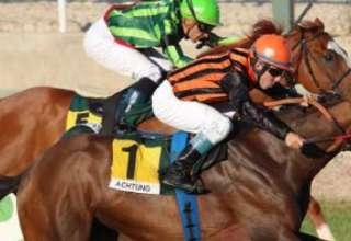 """Achtung el caballo que consiguio la victoria con la fuerza del mas alla 320x220 - """"Achtung"""", el caballo que consiguió la victoria con la fuerza del más allá"""