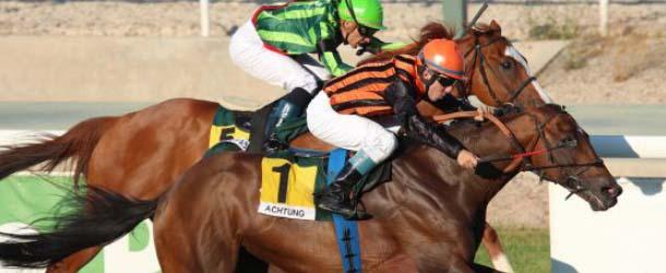 """Achtung el caballo que consiguio la victoria con la fuerza del mas alla - """"Achtung"""", el caballo que consiguió la victoria con la fuerza del más allá"""