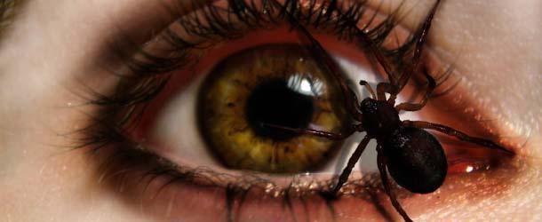 Parásitos astrales se manifiestan en nuestra realidad