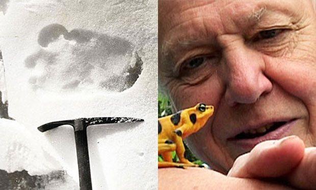 El Yeti existe El famoso científico y naturista Sir David Attenborough dice que el Yeti existe