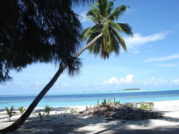 Maldivas - La policía de las Maldivas contrata expertos en magia blanca para investigar un posible coco maldito