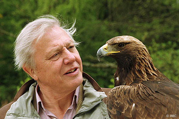 Sir David Attenborough - El famoso científico y naturista Sir David Attenborough dice que el Yeti existe