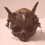 Unicornios humanos, personas descendientes de una antigua raza en la Tierra