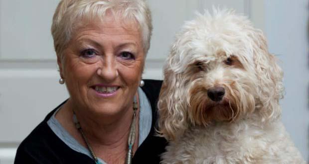 Daisy perra psiquica - Daisy, la perra psíquica que salvó la vida de su propietaria