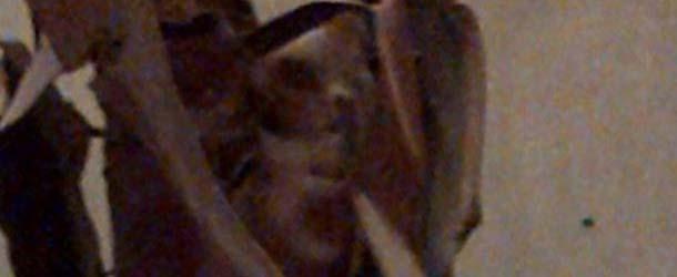"""Rostro fantasmal aparece en una de las vigas de la """"Zona Cero"""" de Nueva York"""