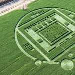 Aparece un misterioso círculo en los cultivos de California con un mensaje oculto