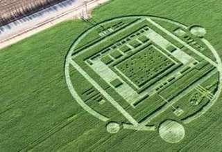 Circulo cultivos California 320x220 - Aparece un misterioso círculo en los cultivos de California con un mensaje oculto