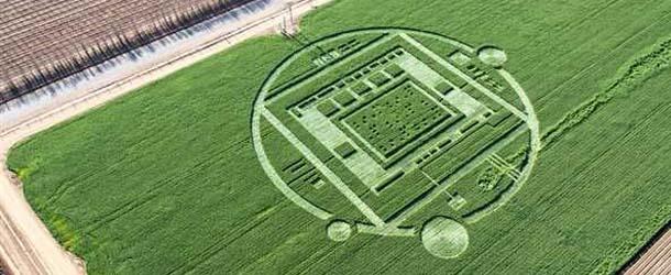 Circulo cultivos California - Aparece un misterioso círculo en los cultivos de California con un mensaje oculto