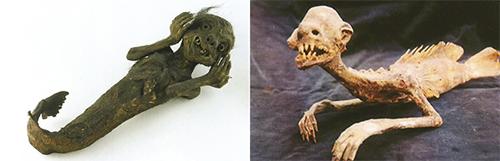 Momias sirena - Momias de demonios en los templos budistas de Japón