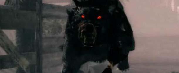 Perros negros fantasma - Encuentros con perros negros fantasma