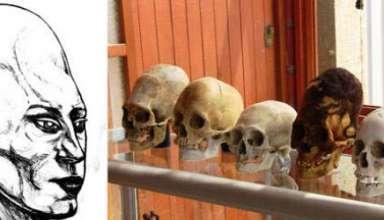 adn craneos alargados paracas 384x220 - Reciente análisis del ADN de los cráneos alargados de Paracas revela que podrían ser de origen extraterrestre