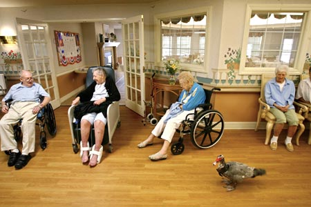 residencia geriatrica - Fantasmas atormentan a los residentes de una residencia geriátrica