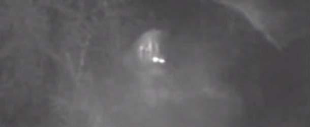grabado video yowie - Dos hombres afirman haber grabado en vídeo al Yowie, el Bigfoot australiano