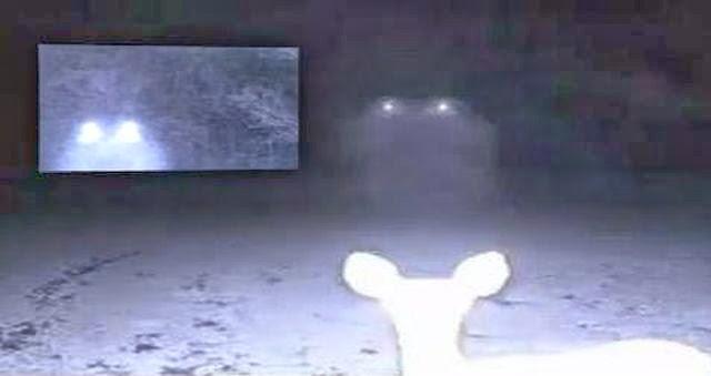 ovni sobre ciervos - Una pareja de Misisipi fotografía un OVNI descendiendo sobre ciervos