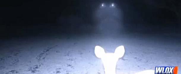 pareja misisipi ovni - Una pareja de Misisipi fotografía un OVNI descendiendo sobre ciervos