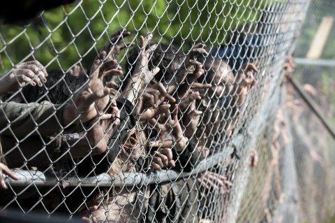 apocalipsis zombie - El Pentágono elabora un plan detallado para detener un apocalipsis zombie