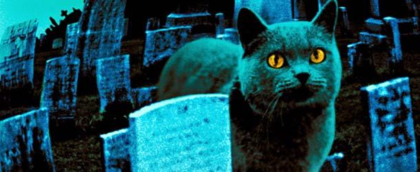 """cementerio mascotas haldon hills - El cementerio de mascotas de Haldon Hills, el verdadero """"Cementerio viviente"""""""