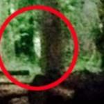 """Dos campistas fotografían al fantasma de la """"Bruja de Blair"""" en un bosque de Inglaterra"""
