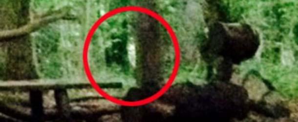 """fantasma bruja blair inglaterra - Dos campistas fotografían al fantasma de la """"Bruja de Blair"""" en un bosque de Inglaterra"""