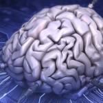 Stephen Hawking afirma que la Inteligencia Artificial acabará con la humanidad