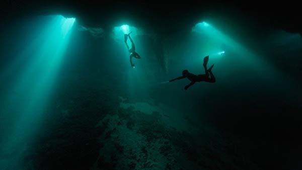 agujeros bahamas Misteriosas criaturas en los agujeros azules de las Bahamas