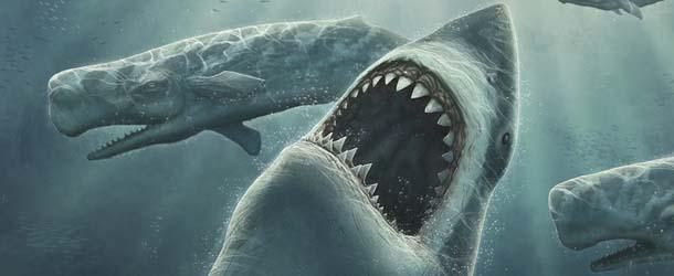 enorme criatura devora tiburon blanco - Enorme criatura misteriosa devora un gran tiburón blanco en las costas de Australia
