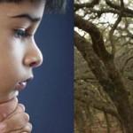 Caso Wijeratne, el niño que confesó el asesinato que cometió en su vida pasada