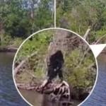 Un hombre de Virginia afirma haber fotografiado al Bigfoot cerca de un río