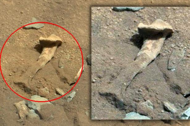 curiosity hueso marte - El rover Curiosity fotografía un hueso parecido al fémur en Marte