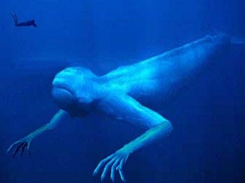 ningen criaturas humanoides artico - Los Ningen, las criaturas humanoides del Ártico