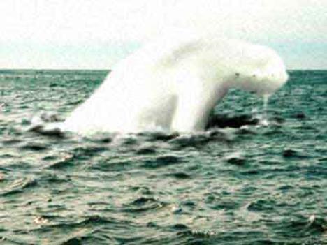 ningen Los Ningen, las criaturas humanoides del Ártico