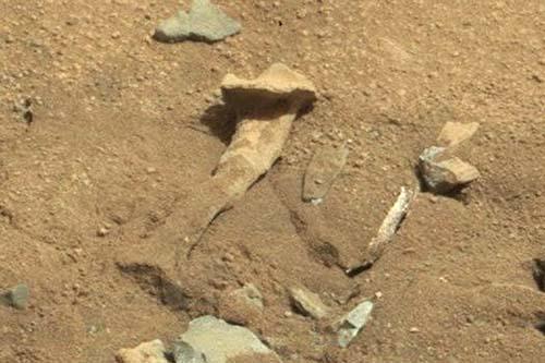 rover curiosity femur marte - El rover Curiosity fotografía un hueso parecido al fémur en Marte