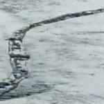Comisión islandesa confirma que el monstruo del lago Lagarfljót es real