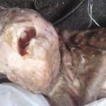 Nace una cabra con rostro de bebé humano en una granja de Argentina