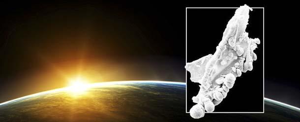 cientifico demuestra vida extraterrestre - Científico demuestra la existencia de vida extraterrestre