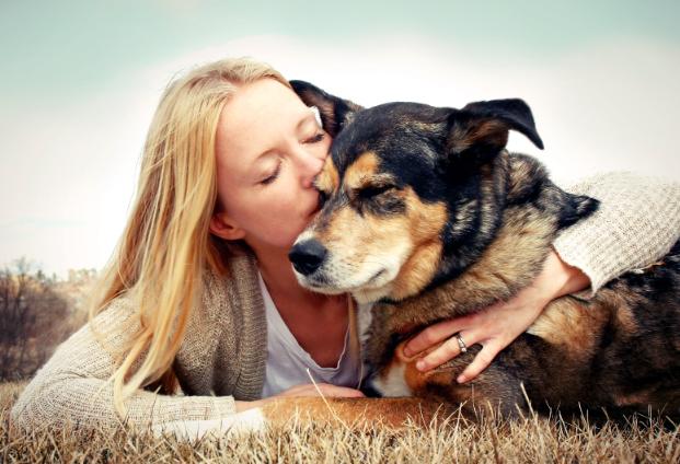 la comunicacion telepatica animales - ¿Es posible la comunicación telepática con los animales?