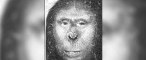 cientifico britanico yeti - Científico británico afirma haber descubierto un yeti
