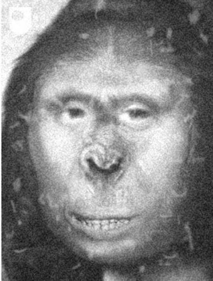 cientifico yeti - Científico británico afirma haber descubierto un yeti