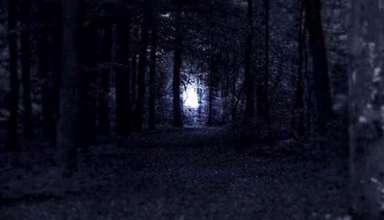 misteriosas luces islas ibicuy 384x220 - Continúa el fenómeno de las misteriosas luces en las Islas del Ibicuy