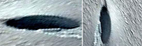 google earth ovni estrello antartida - Descubren en Google Earth un gran OVNI que se estrelló en la Antártida