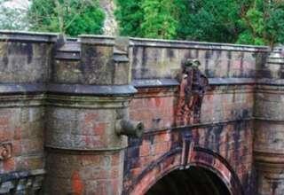 perros puente overtoun 320x220 - Una investigación asegura que un espíritu obliga a que los perros se suiciden en el puente Overtoun