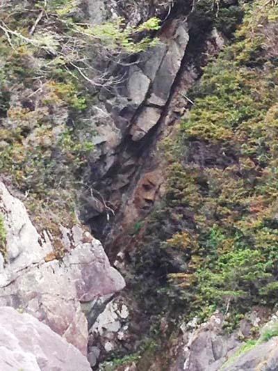 rostro acantilado canada - Descubren un misterioso rostro en un acantilado de una isla remota de Canadá