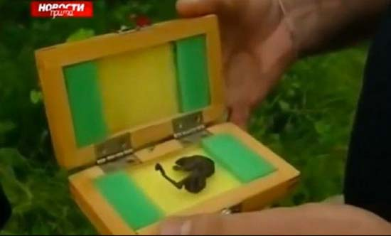 cadaver extraterrestre central nuclear rusia - Científicos desconcertados por el descubrimiento del cadáver de un extraterrestre cerca de una central nuclear en Rusia
