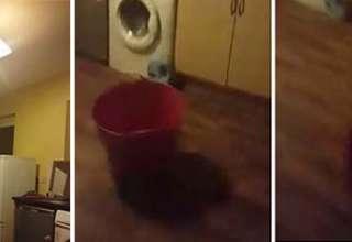 poltergeist real irlanda 320x220 - Mujer graba en video un poltergeist real en su casa de Irlanda