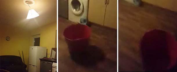 poltergeist real irlanda - Mujer graba en video un poltergeist real en su casa de Irlanda